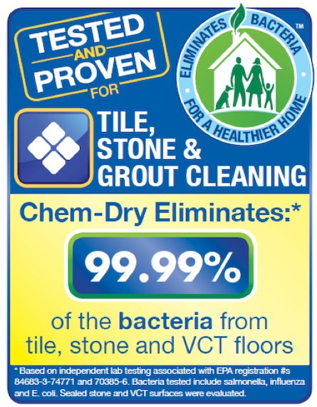 Stone, Tile & Grout Cleaning by Chem-Dry of New Port Richey Removes 98.6% of Bacteria